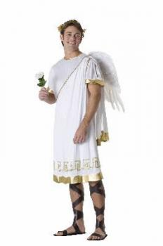 Buy Cheap Adult Male Cupid Valentines Day Costume For Men